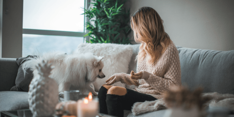 Decorative image of a blonde woman sitting on a hygge couch with her white fluffy dog. There is a ceramic pineapple in the blurry foreground with candles and other decor. Behind them is a green tree by a window.