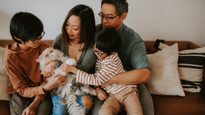 Decorative image of an Asian family cuddling a very fuzzy, very annoyed looking cat. They are sitting on a brown couch with comfy looking pillows. The mom is holding the annoyed cat while two little boys pet the cat.
