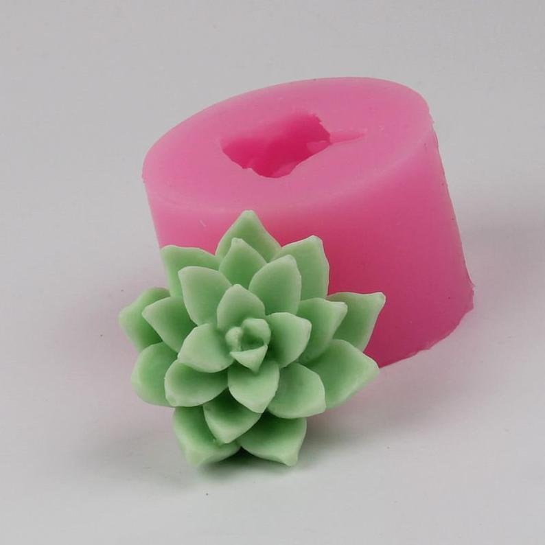 Decorative image of a succulent candle and its silicone mold